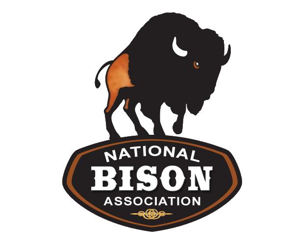 bison_final